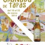 6ª Edición del concurso de tapas en Granada